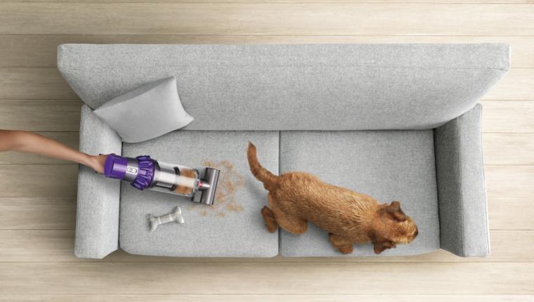 Evcil Hayvan Sahiplerine Temizlik İpuçları